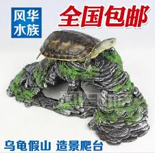 turtle accessories all the best accessories in 2017
