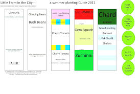Vegetable Garden Layout Guide Vegetable Garden Layout Ideas And Planning Backyard Design