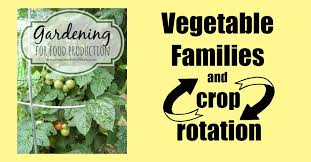 vegetable families and crop rotation preparednessmama