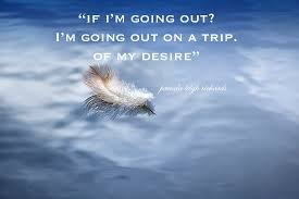leigh richards white feather quote
