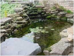 Garden Pond Ideas Backyards Wondrous Backyard Designs 36 Small Garden Pond Ideas