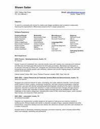 Sample Resume Latest Examples Of Resumes 93 Mesmerizing Resume For Jobs Security Jobs