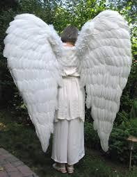 Halloween Costume Angel Wings 35 Angel Costumes Images Angel Costumes
