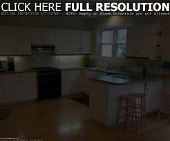 Lowest Price Kitchen Cabinets - low cost kitchen cabinets maxbremer decoration