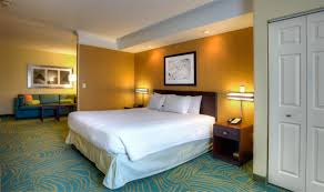 Bed Frames Tampa by Brandon Fl Hotel Photos Springhill Suites By Marriott Tampa Brandon