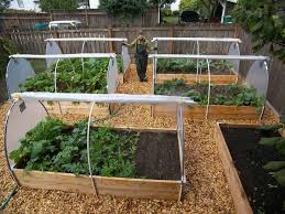 Veg Garden Ideas Vegetable Beds With Roll Up Plastic Sides Yard Pinterest