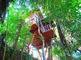 guest house hars garden tree houses ubud indonesia booking com