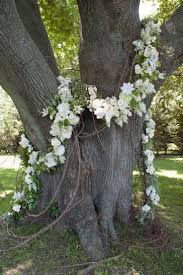 best 25 tree decorations wedding ideas on pinterest outdoor