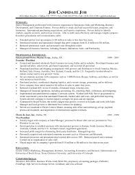 Startup Resume Example by Ceo Resumes Resume For Your Job Application