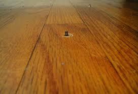 Fix Creaky Hardwood Floors - rabit stew wordpress com delightful fix squeaky hardwood floor