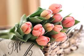 wallpaper bunga tulip tulips buds bouquet wallpaper 3000x2000 849234 wallpaperup