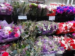 Bulk Peonies Decor Beautiful Costco Floral For Home Decoration Ideas