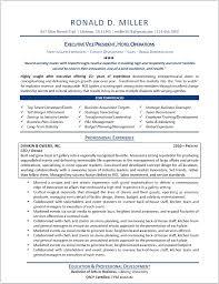 sle executive resume styles executive resume template best executive resume templates