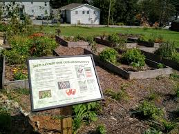 community garden space takes root on appalachian u0027s campus