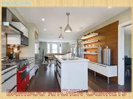 Kitchen Cabinet Modern San Francisco Kitchen Cabinets Modern Bamboo Size Of Cabinet