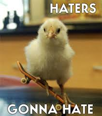 Hater Gonna Hate Meme - image 249514 haters gonna hate know your meme