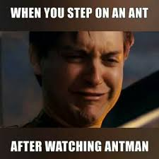 Man Memes - ant stop won t stop 15 hilarious ant man memes ultimate comicon