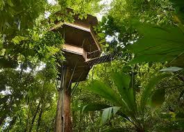best 25 best tree houses ideas on amazing tree house