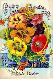 flower seed packets 1899 pella iowa cole s garden vintage flowers seed