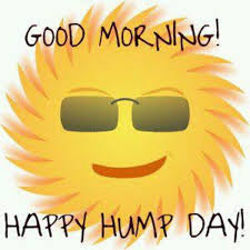 Happy Hump Day Memes - hump day quotes