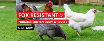 fox resistant portable chicken coops u0026 houses keep hens safe