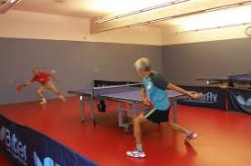 Table Tennis Meeting Table Table Tennis Rossmoor
