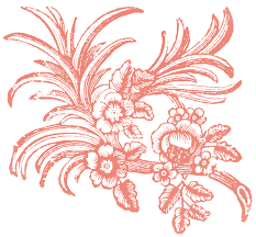 free floral ornaments the graphics