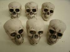 Skull Decorations For The Home Skull Decor Ebay