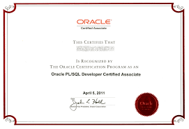 sample java resume oracle corp partners company sfera a s