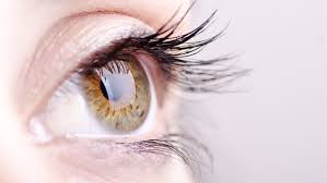 Blind Spot In Eyes These Eye Symptoms Show You Are Not Well