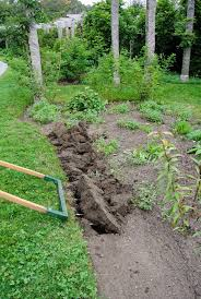transforming my pergola garden the martha stewart blog