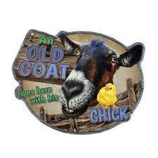 Goat Home Decor Goat And His Novelty Sign Home Décor Garage Wall