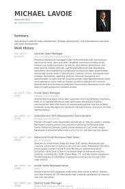 Sprint Resume Territory Sales Manager Resume Territory Sales Manager Resume