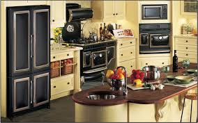 House Kitchen Appliances - now this is how you a vintage kitchen house crazy