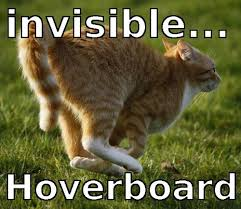 Invisible Cat Memes - invisible hoverboard cat meme discovered by yanito freminoshi