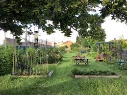 mitcham orchard orchardmitcham twitter