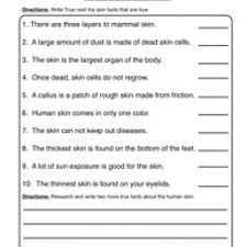 skin worksheet 2