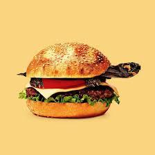 jeux de cuisine burger les jeux de mots visuels étranges et surréalistes de randy lewis