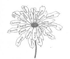 eletragesi daisy drawing images
