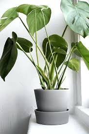 Cheap Patio Pots Garden Planters Pots U2013 Exhort Me