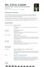 Financial Consultant Job Description Resume by Financial Resume Samples Visualcv Resume Samples Database