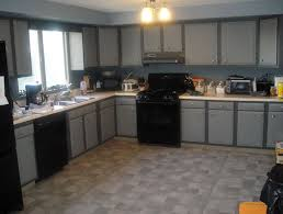 gray kitchen cabinets with black appliances home design ideas