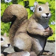 squirrel lawn ornament humandog tv