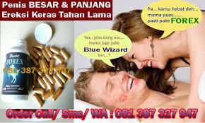 forex asli obat pembesar alat vital pria permanen obat forex asli