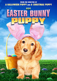 puppy background for computer halloween amazon com an easter bunny puppy various movies u0026 tv