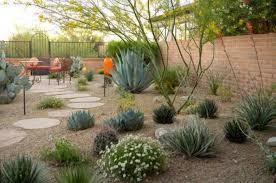 Backyard Desert Landscaping Ideas Backyard Desert Landscaping Desert Landscaping For Your Yard In