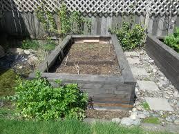 plantings sofia homestead