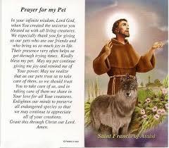 pet prayer st francis prayer for my pet prayer card discount catholic store
