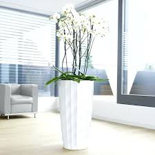 Tall Rectangular Planter by Large Indoor Plant Containers U2013 Eatatjacknjills Com