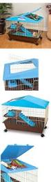 Guinea Pig Cages Cheap Best 25 Indoor Guinea Pig Cage Ideas On Pinterest Guinea Pig